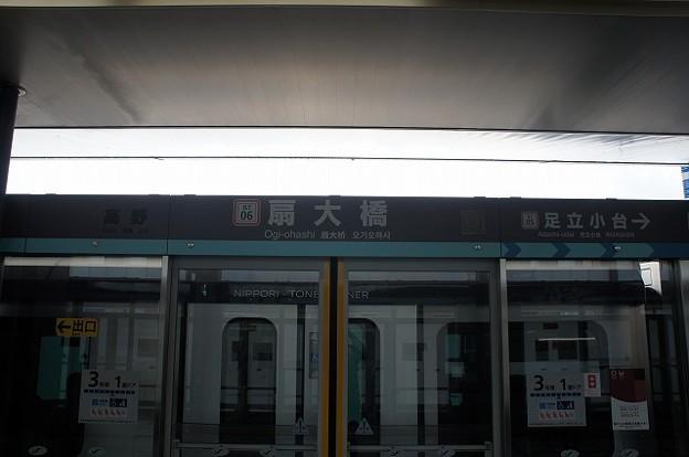NT06 扇大橋