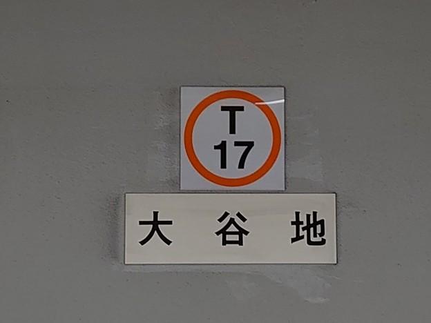 T17 大谷地