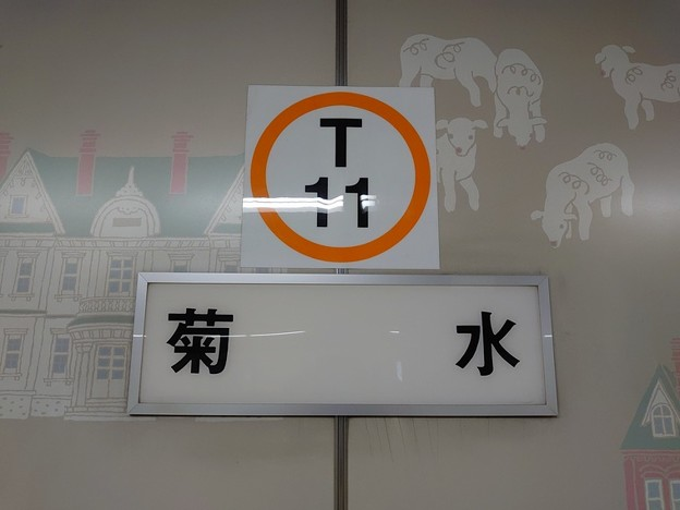 T11 菊水