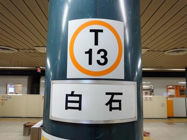 T13 白石