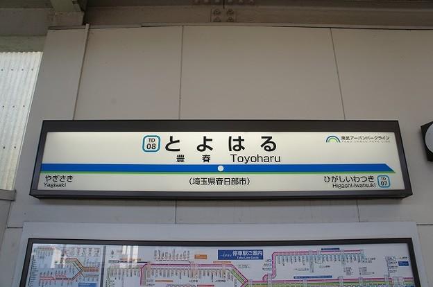 TD08 豊春