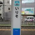 Photos: SS25 いりそ