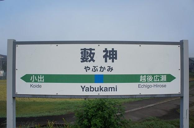 Photos: 薮神