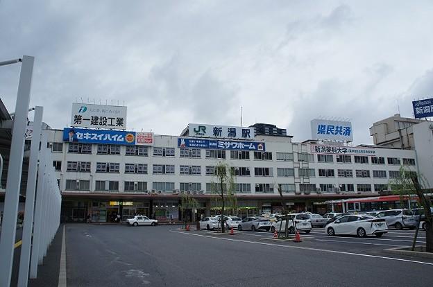 Photos: 新潟