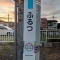 Photos: ふるつ