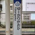Photos: KS33 ゆーかりがおか