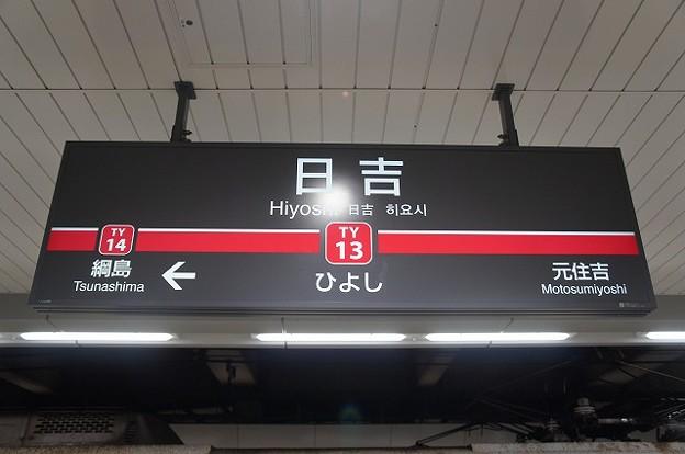TY13 日吉