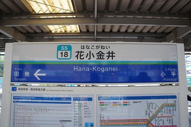 SS18 花小金井