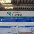 Photos: SS18 花小金井