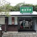 Photos: 極楽寺