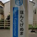 Photos: OE14 ほんくげぬま