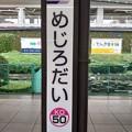 Photos: KO50 めじろだい