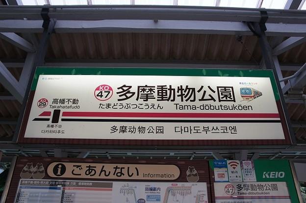 KO47 多摩動物公園
