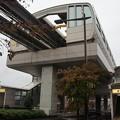 Photos: 柴崎体育館