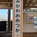 Photos: みかわおおつか