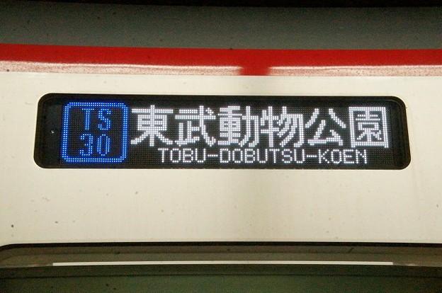 Photos: TS30 東武動物公園