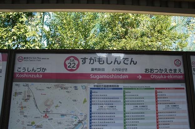 SA22 巣鴨新田