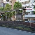 Photos: 面影橋