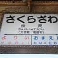 Photos: 桜沢