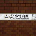 Photos: Y06 F06 小竹向原