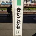 Photos: JL26 きたこがね