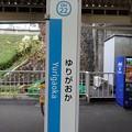 Photos: OH22 ゆりがおか