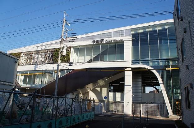 Photos: 多磨