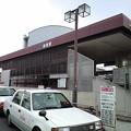 Photos: 黄檗