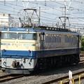 Photos: EF65-501