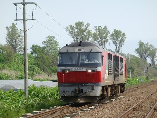 DF200-116