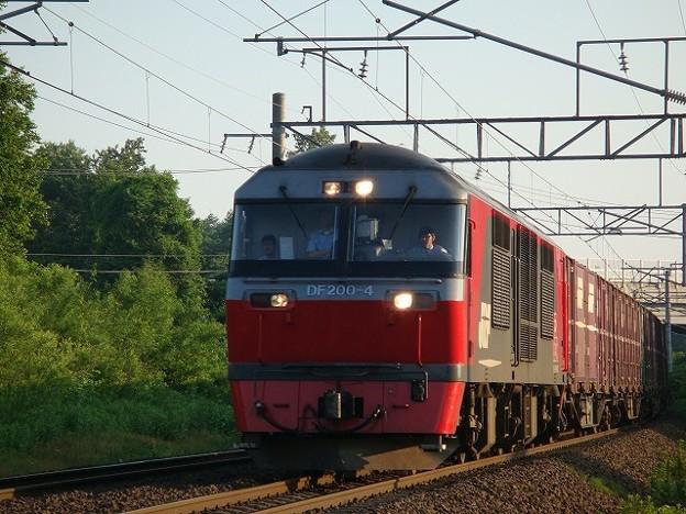 DF200-4