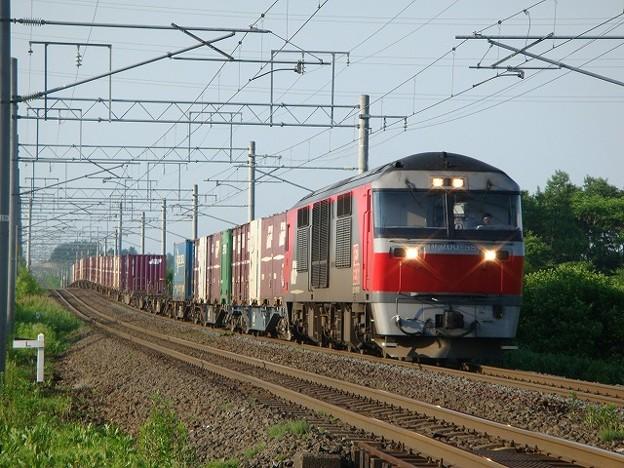 DF200-55