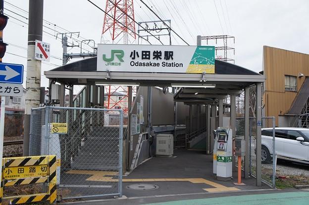Photos: 小田栄