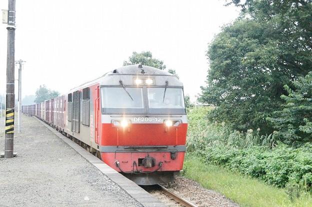 DF200-12