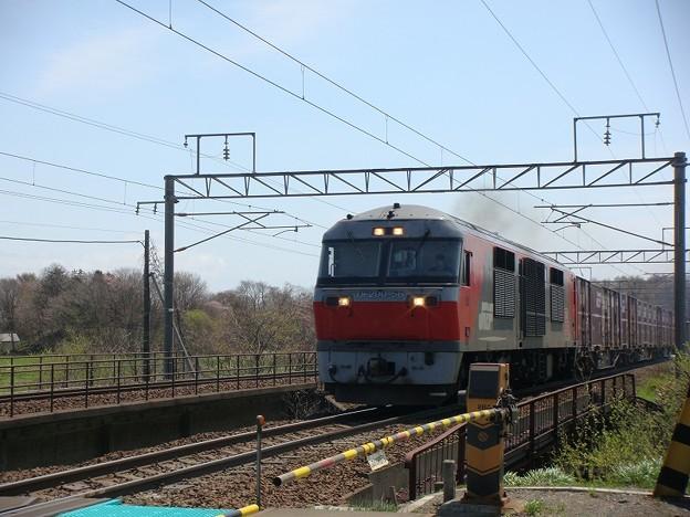 DF200-56