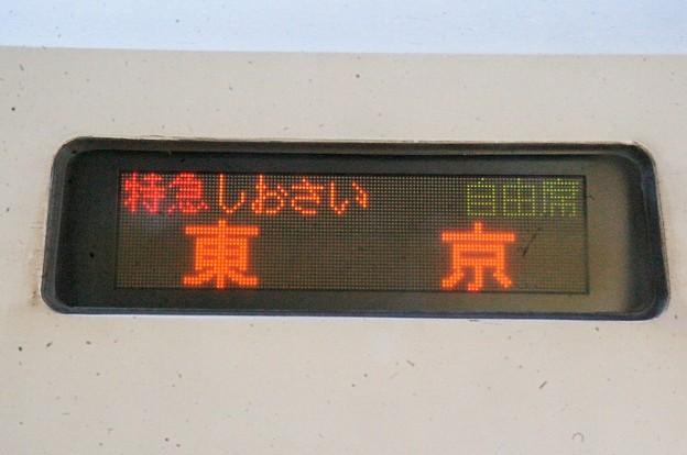 特急しおさい 東京
