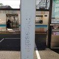 Photos: Chigasaki