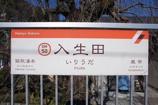 OH50 入生田