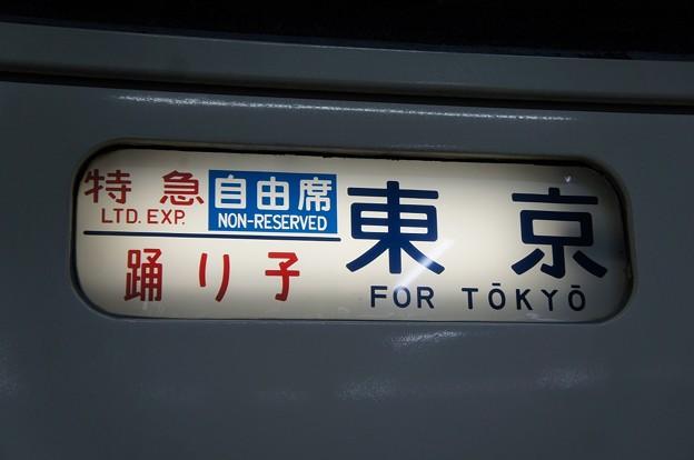 特急踊り子 東京