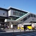 Photos: 蕨