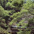 000470_20140506_JR丹波大山-下滝