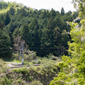 000485_20140506_JR丹波大山-下滝
