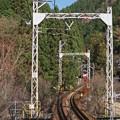 Photos: 000771_20141130_叡山電鉄_貴船口