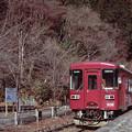 Photos: 001612_20170107_長良川鉄道_北濃