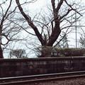 Photos: 001847_20170319_のと鉄道_能登鹿島