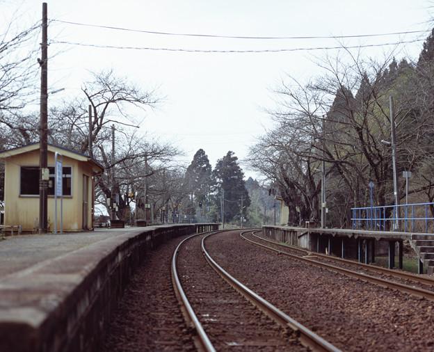 Photos: 001848_20170319_のと鉄道_能登鹿島