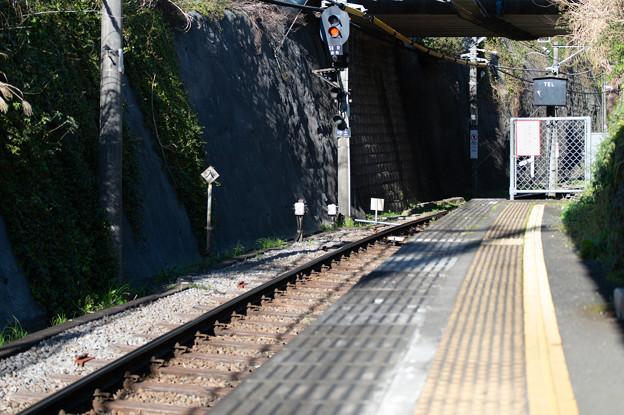 004138_20200320_江ノ島電鉄_極楽寺