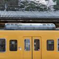 Photos: 004318_20200404_JR新見