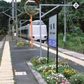 002574_20180616_JR船岡