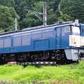 Photos: 002623_20180729_碓氷峠鉄道文化むら